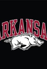 Champion Arkansas Razorback Short Sleeve Jersey Tee By Champion