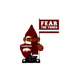 Razorback Fear The Tusks Gnome