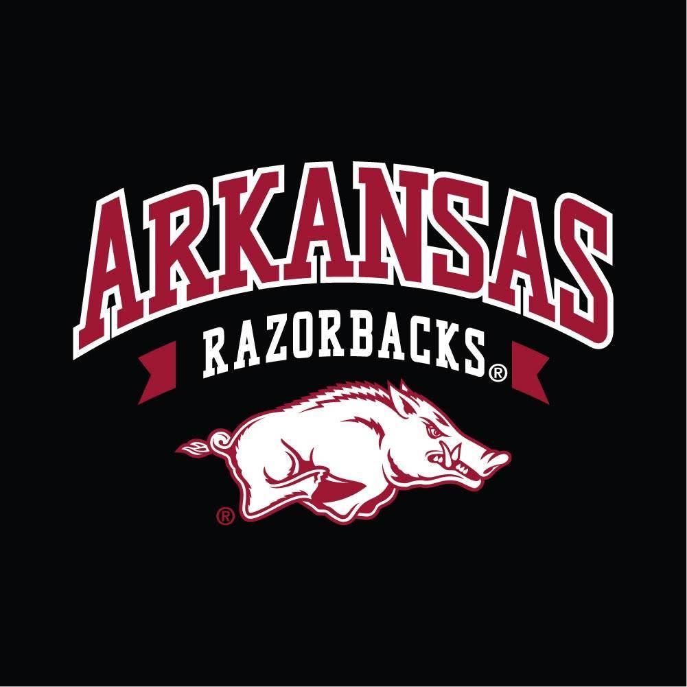 Champion Arkansas Razorback University Lounge 1/4 Zip