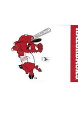 Wincraft Arkansas Razorback Baseball Ribby 3X5 Flag