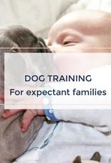 Prenatal & New Parent dog training workshop