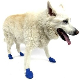 PAWZ Pawz Waterproof Disposable Dog Boots Medium, 12pk