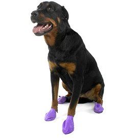 PAWZ Pawz Waterproof Disposable Dog Boots Large, 12pk