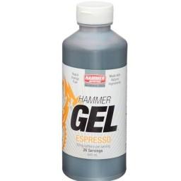 Hammer Nutrition Gel 20oz
