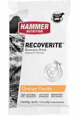 Hammer Nutrition Recoverite Single Serving
