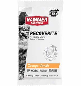 Hammer Nutrition Recoverite Single Serving