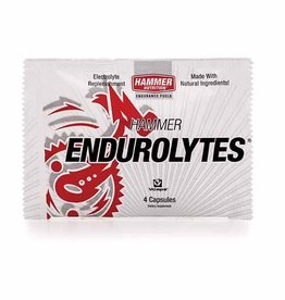 Hammer Nutrition Hammer Endurolytes Single Serving