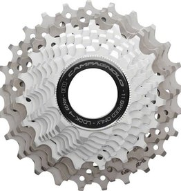 Campagnolo Record Cassette 11 Speed