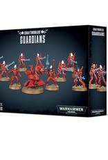 Games Workshop Guardian Squad