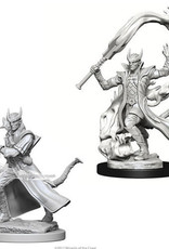 WizKids D&D Nolzur's Marvelous Unpainted Miniatures: W4 Tiefling Male Sorcerer