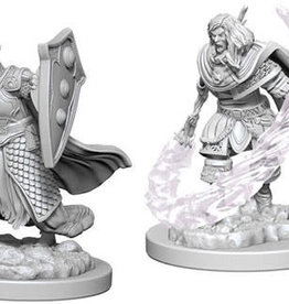 WizKids D&D Nolzur's Marvelous Unpainted Miniatures: W5 Elf Male Cleric