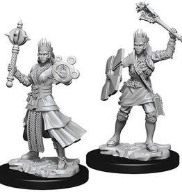 WizKids D&D Nolzur's Marvelous Unpainted Miniatures: W8 Female Human Cleric