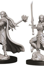 WizKids D&D Nolzur's Marvelous Unpainted Miniatures: W9 Female Elf Paladin