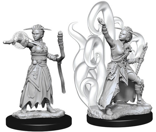 WizKids D&D Nolzur's Marvelous Unpainted Miniatures: W10 Female Human Warlock