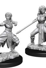 WizKids D&D Nolzur's Marvelous Unpainted Miniatures: W10 Female Half-Elf Monk