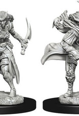 WizKids Dungeons & Dragons Nolzur`s Marvelous Unpainted Miniatures: W7 Tiefling Female Rogue