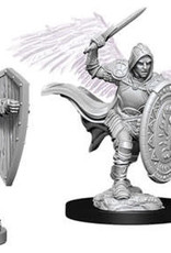 WizKids Dungeons & Dragons Nolzur`s Marvelous Unpainted Miniatures: W5 Aasimar Male Paladin