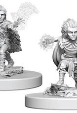 WizKids Pathfinder Deep Cuts Unpainted Miniatures: W5 Gnome Male Druid