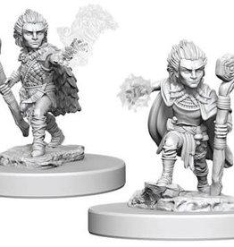 WizKids Pathfinder Deep Cuts Unpainted Miniatures: W5 Gnome Male Druid