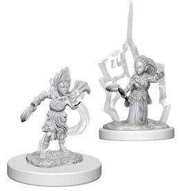WizKids Pathfinder Deep Cuts Unpainted Miniatures: W5 Gnome Female Druid