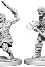WizKids Dungeons & Dragons Nolzur`s Marvelous Unpainted Miniatures: W6 Nameless One