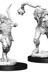 WizKids Pathfinder Deep Cuts Unpainted Miniatures: W6 Male Elf Fighter