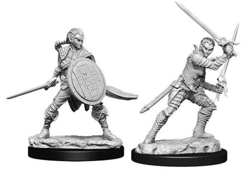 WizKids Pathfinder Deep Cuts Unpainted Miniatures: W6 Female Elf Fighter