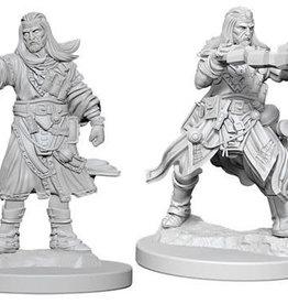 WizKids Pathfinder Deep Cuts Unpainted Miniatures: W6 Male Human Wizard