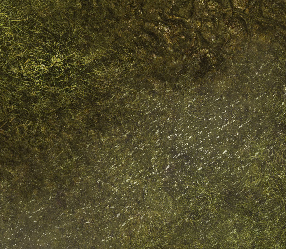Frontline-Gaming FLG Mats: Swamp 2 6x3'