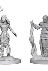 WizKids D&D Minis: Wave 2- Human Female Druid