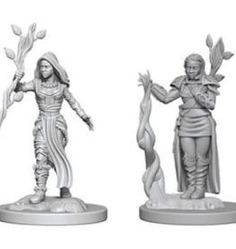 WizKids D&D Minis: Wave 2- Human Female Druid