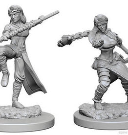 WizKids D&D Minis: Wave 1- Human Female Monk
