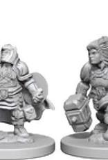WizKids D&D Minis: Wave 3- Dwarf Female Paladin