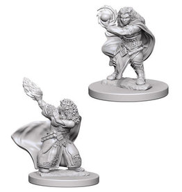 WizKids D&D Minis: Wave 4- Dwarf Female Wizard
