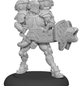 Privateer Press Warcaster: Paladin Aegis – Iron Star Alliance Attachment