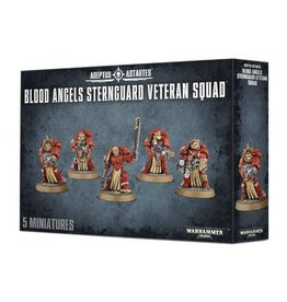 Games Workshop Blood Angels Sternguard Veteran Squad