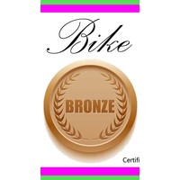 Bronze Bike Tune Up Single Speed Gift Certificate