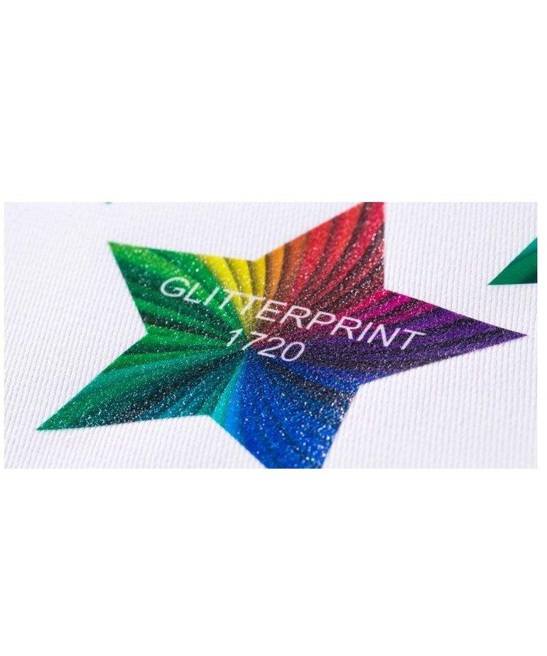 Chemica GlitterPrint 1720 30 in x 22 yd