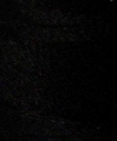 Floriani Floriani - PF0900 - Black