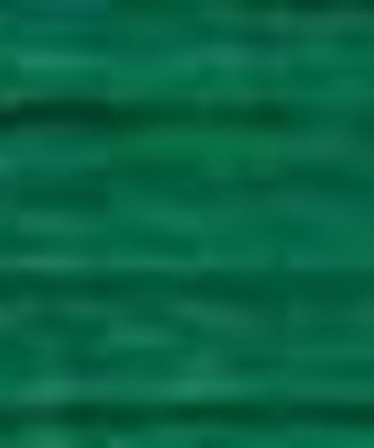 Coats Sylko - B5129 - Shamrock Green