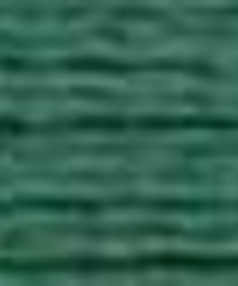 Coats Sylko - B5201 - Green Forest
