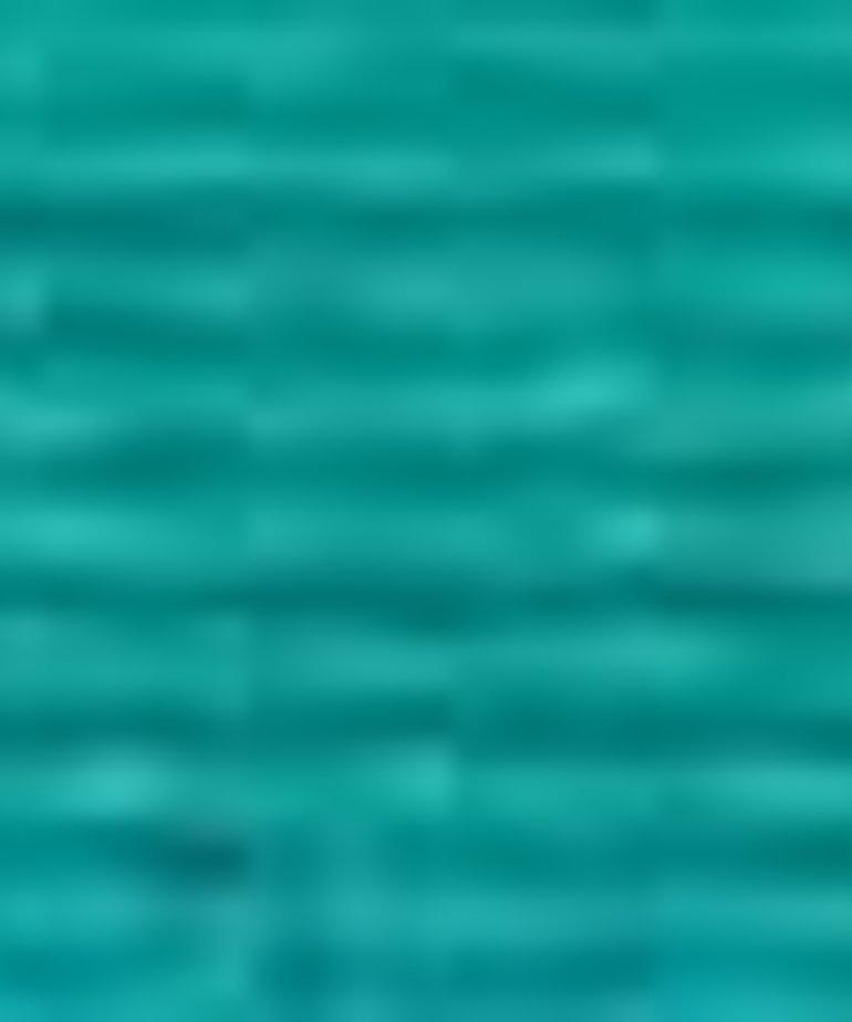 Coats Sylko - B5274 - Inlet Green
