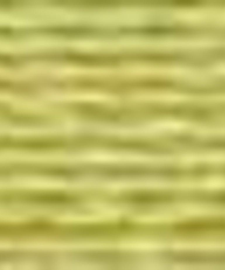 Coats Sylko - B5356 - Bright Green