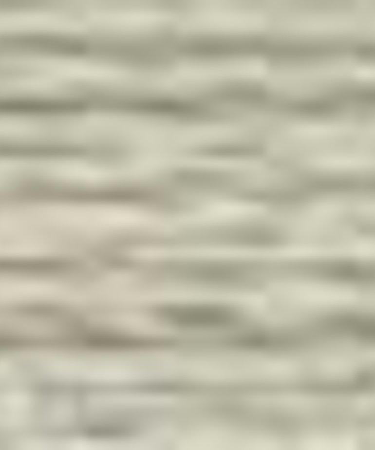 Coats Sylko - B9359 - Chino