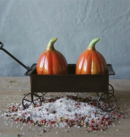 Creative Co-Op Ceramic Pumpkin Salt & Pepper Shakers