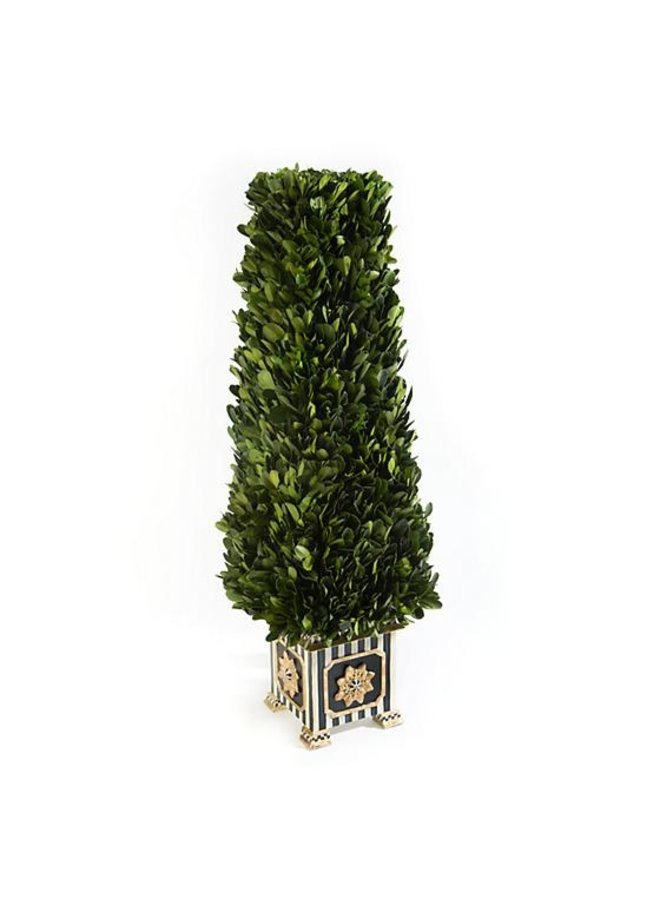 Boxwood Obelisk-Small