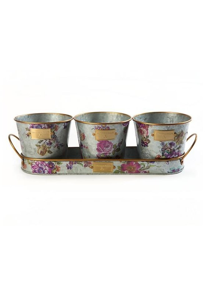 Flower Market Herb Pots with Tray-Set of 3