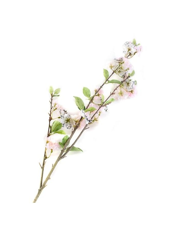 Courtly Check Cherry Blossom Spray - White