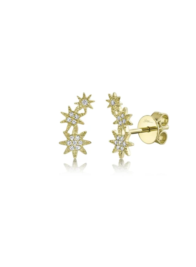 14K Yellow Gold and Diamond Star Earrings (.06 Ct)