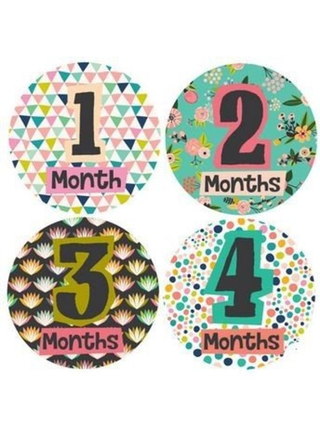 Little Lady Monthly Stickers